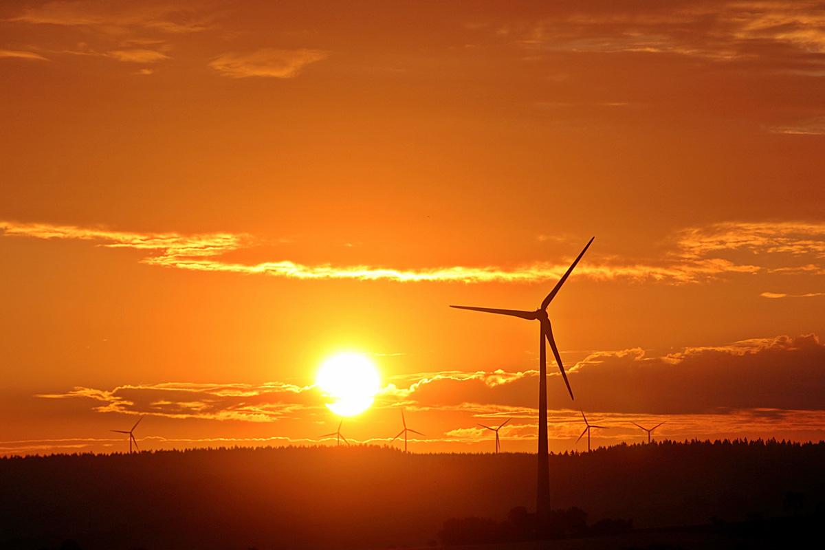 nero wind farm