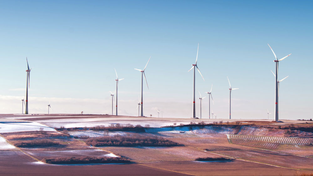 Renewable-boom
