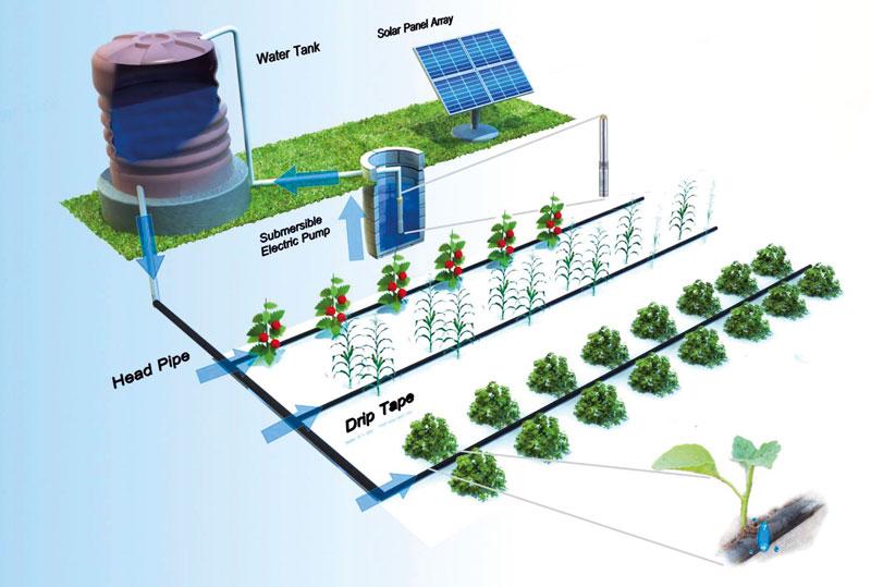 Agrivoltaic-Water-scheme
