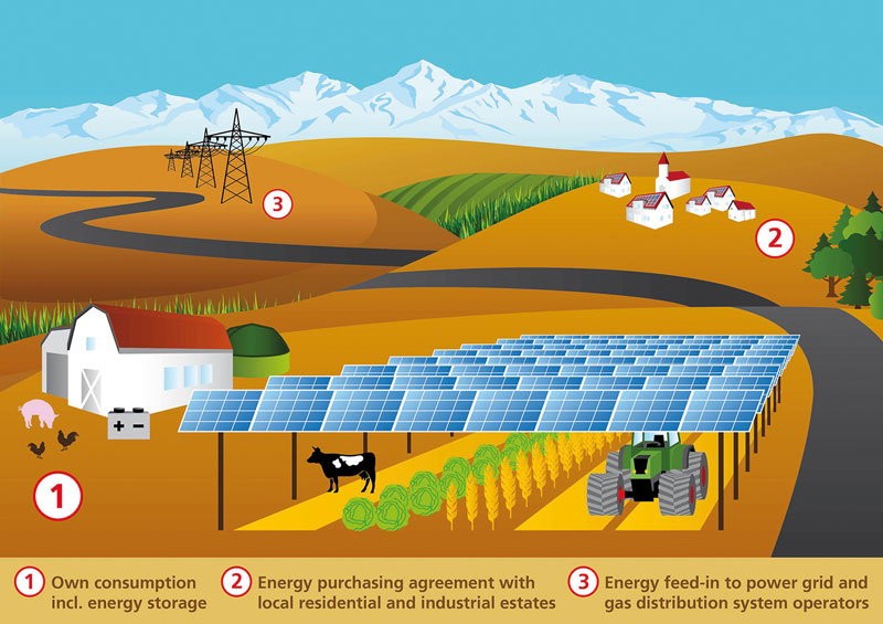 Agrivoltaic-electricity-sell-out