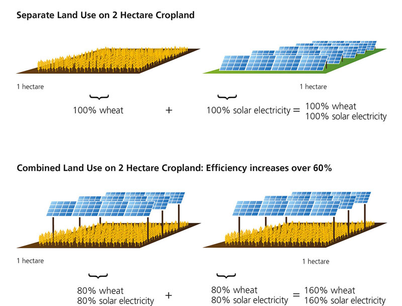 Agrivoltaic-separate-land-use
